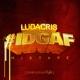 ludacris idgaf