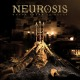 neurosis honour found in decay