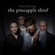 pineapple thief,the introducing the pineapple thief