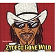 rockin' dopsie jr. & the zydeco twisters zydeco gone wild