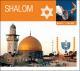 shalom shalom-music travels