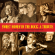 sweet honey in the rock a tribute-live! jazz at lincoln center