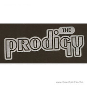 t-shirt-prodigy-black-with-silver-print-small