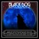 various black dog