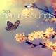 various nature sounds