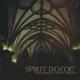 vidnaobmana/steve roach spirit dome
