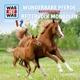 was ist was folge 56: wunderbare pferde/reitervolk m