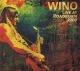 wino live at roadburn 2009