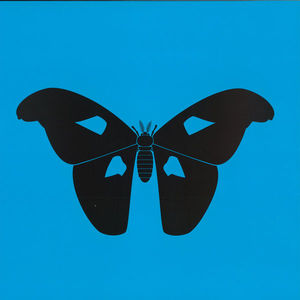 1NC1N - The Butterfly Effect LP