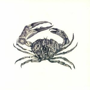 Adam Stromstedt - CRAB SHACK (180G / VINYL ONLY)