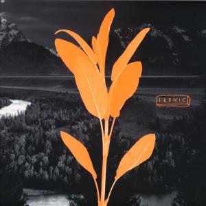 Altitude - Blackstock EP