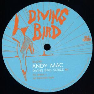 Andy Mac - Diving Bird 3