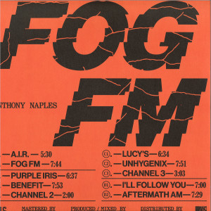 Anthony Naples - Fog FM (Back)