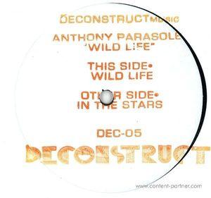 Anthony Parasole - Wild Life