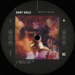 Bart Skils - Settle In The Sun