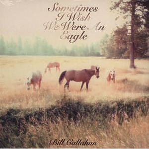 Bill Callahan - Sometimes I Wish We Were An Eagle (LP)