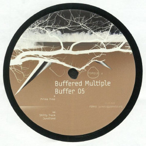 Buffered Multiple - Buffer 05