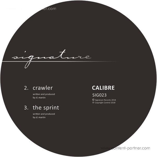 Calibre - Falls To You (Back)