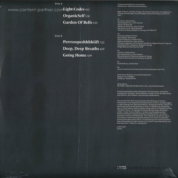 Carlos Nino & Friends - Going Home (LP) (Back)
