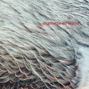 Charlotte De Witte - Vision EP (12