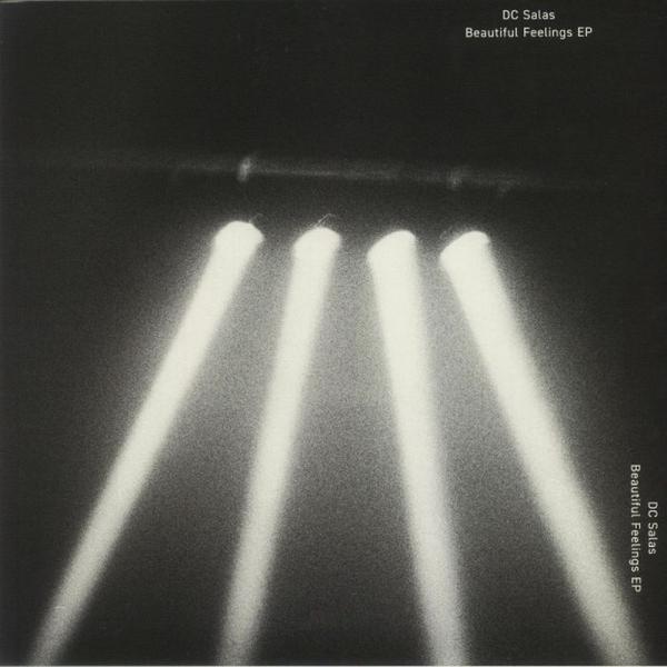 DC Salas - The Beautiful Feelings EP