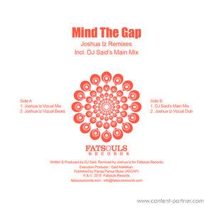 DJ Said - Mind the Gap (Joshua Iz Remixes)