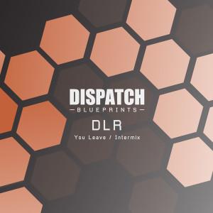 DLR - You Leave / Intermix