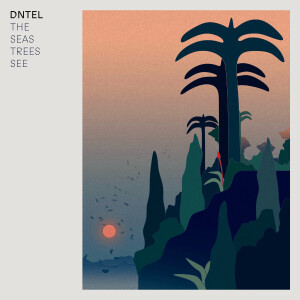 DNTEL - The Seas Trees See (LP)