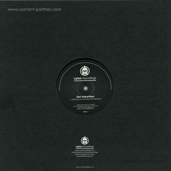Dan Habarnam - The System / Garlic Boy Remixes (Back)