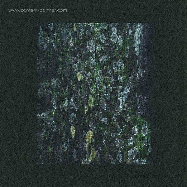 Dark Sky - Kilter / Acaica - Remixes
