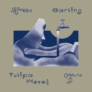 Darling - Tulipa Moves