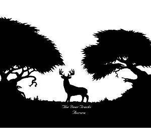 Deer Tracks,The - Aurora