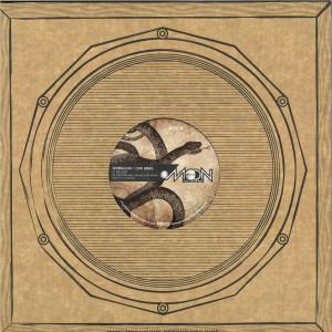 Dubbing Sun, Echo Ranks - Politician / Radikal Guru Remix