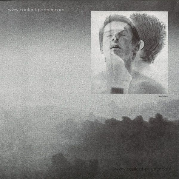 Edward - Shufflehead