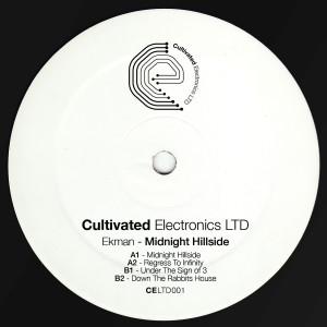 Ekman - Midnight Hillside
