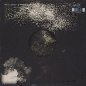 Fink - Fall Into The Light / Pilgrim