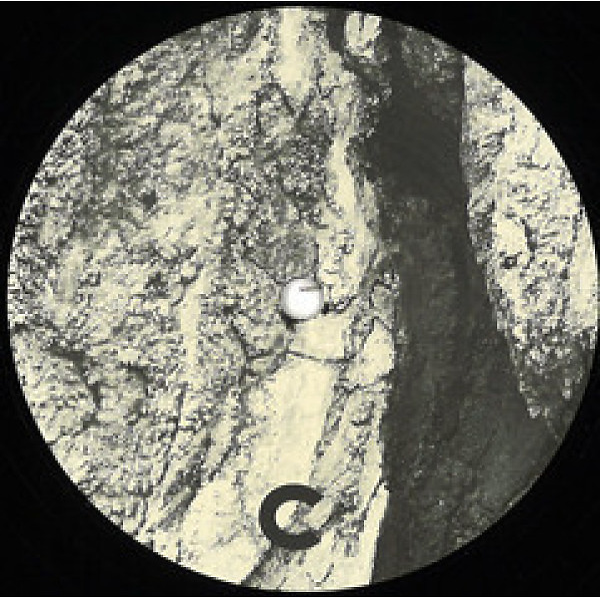 F-on & Urtzi - Downbeat Black Label 04 - Part 2 (C/D)