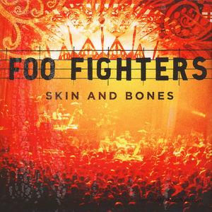 Foo Fighters - Skin and Bones (2LP)