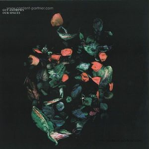 Guy Andrews - Our Spaces (2LP/180g)