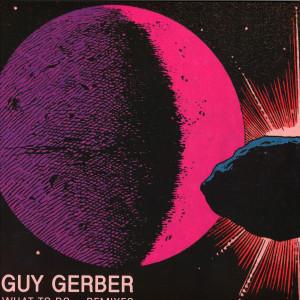 Guy Gerber - What to do Remixes (inc. &ME / DJ Jes Remixes)