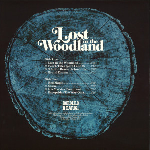 HEINRICH DRESSEL - LOST IN THE WOODLAND LP (Back)