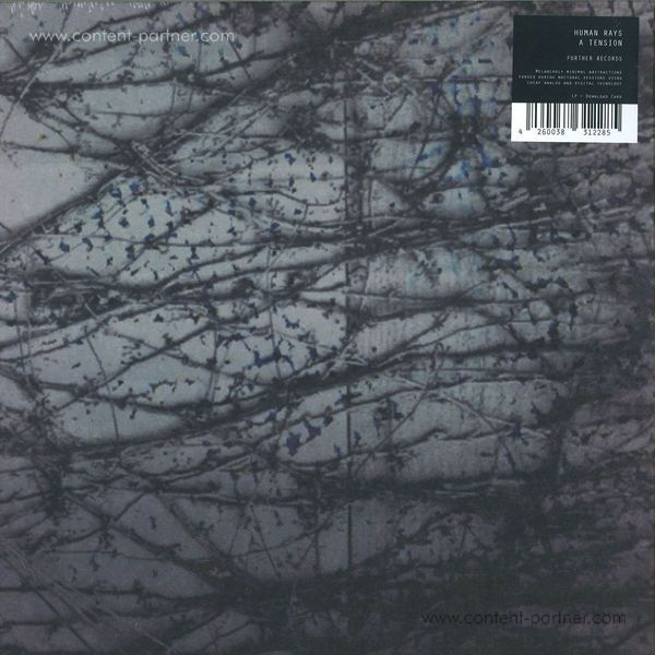 Human Rays - A Tension (Back)