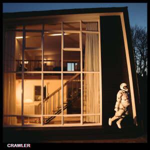 IDLES - CRAWLER(Ltd.Ed.)(Deluxe 2LP)