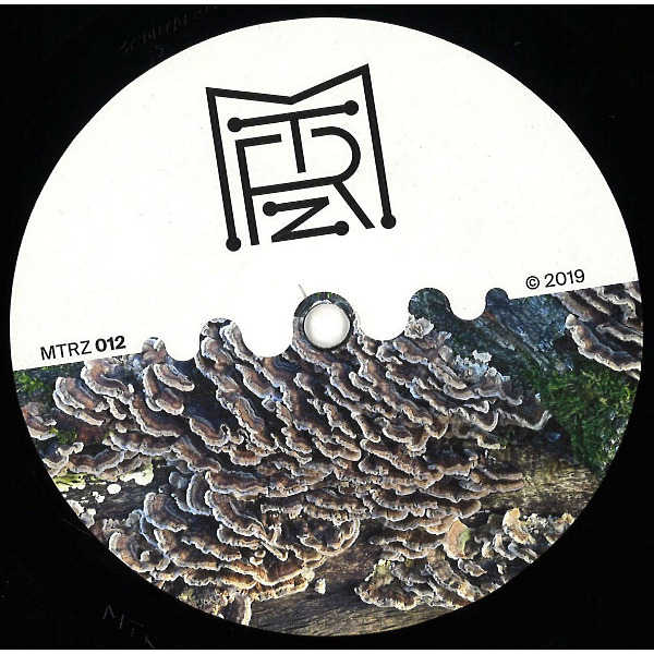 Ion Ludwig - A Better Future To Long EP