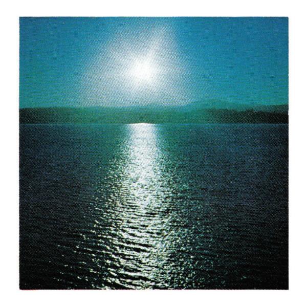 Joanna Brouk - The Space Between (LP)