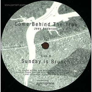 Joey Anderson - Come behind the Tree