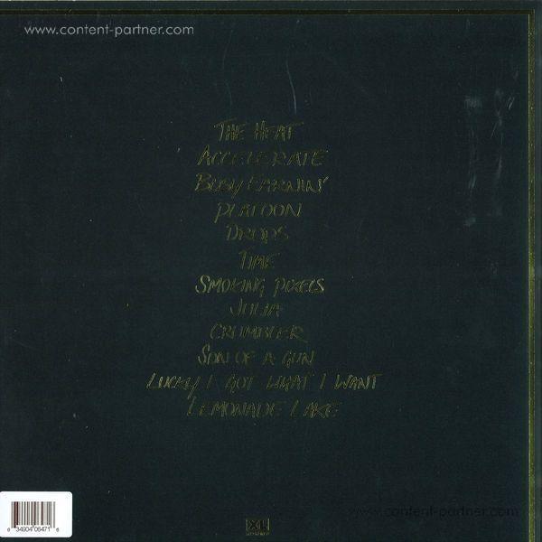 Jungle - Jungle (180g LP) (Back)