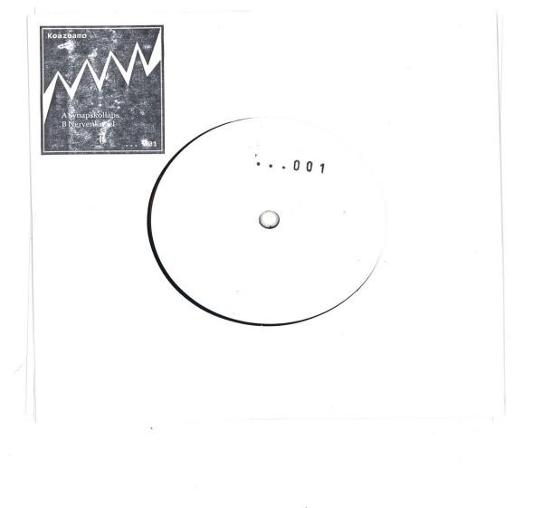 Koazoamo - Synapskollaps EP (Back)