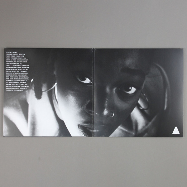 Little Simz - GREY Area (Coloured LP/Gatefold) (Back)