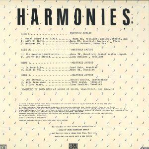Lord Echo - Harmonies (DJ Friendly 2LP Edition) (Back)